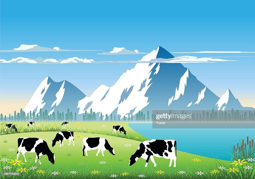 Mountain Pasture : stock illustration