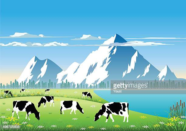 mountain pasture - cow stock illustrations