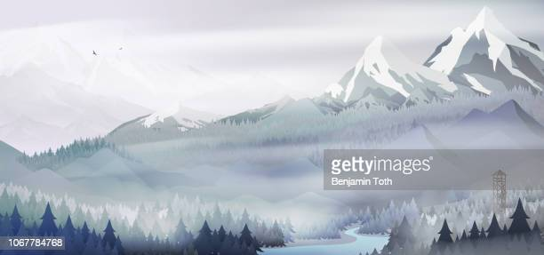 Mountains landscape with pine forest in winter time
