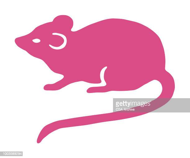 mouse - rat stock illustrations, clip art, cartoons, & icons