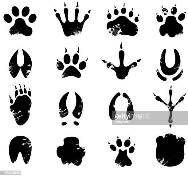 ilustrações, clipart, desenhos animados e ícones de muddy pegada símbolos - impressão ilustração
