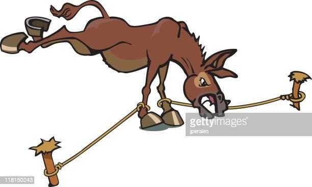 ilustraciones, imágenes clip art, dibujos animados e iconos de stock de mule - mula