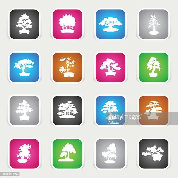 multicolor icons - bonsais - cedar tree stock illustrations, clip art, cartoons, & icons