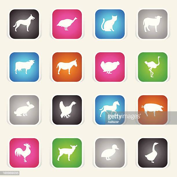 Multicolor Icons - Farm Animals