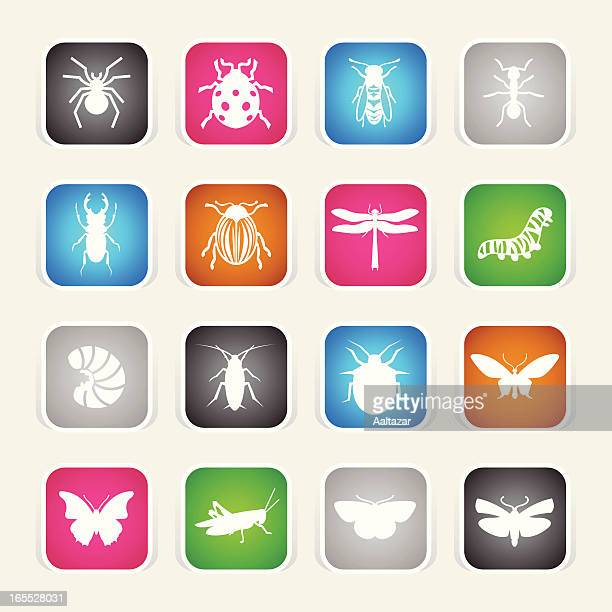Multicolor Icons - Insects