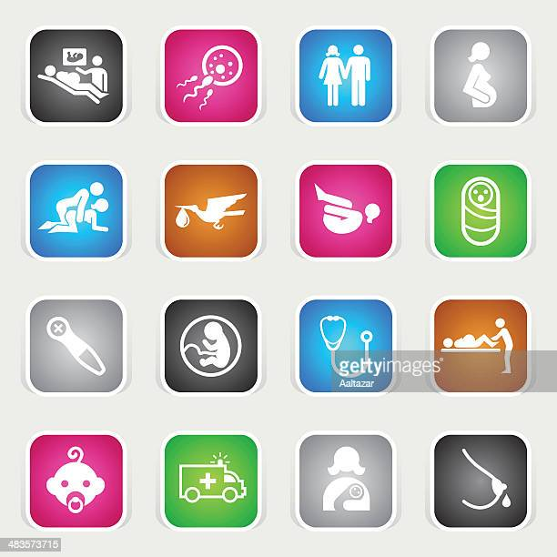 multicolor icons - pregnancy & childbirth - animal fetus stock illustrations, clip art, cartoons, & icons