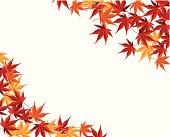 Multicolored autumn, maple leaf vector