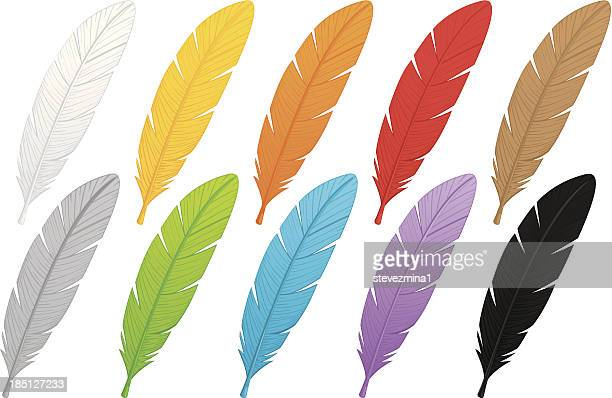 multi-colored feathers - feather stock illustrations