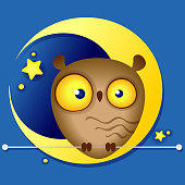 Multi-colored illustration of a cute funny owl on the background of the moon
