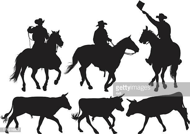 multiple image of rodeo - horseback riding stock illustrations, clip art, cartoons, & icons