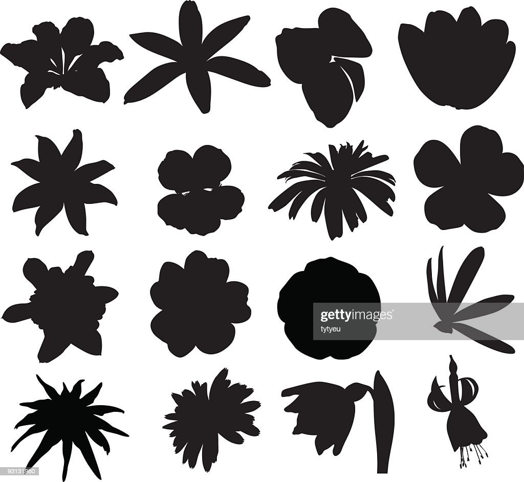 Multiple silhouettes of vector flowers