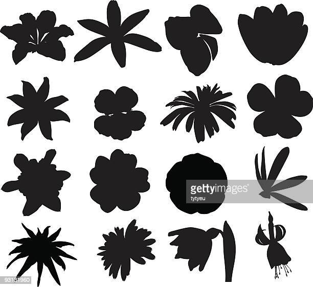 multiple silhouettes of vector flowers - buttercup stock illustrations, clip art, cartoons, & icons