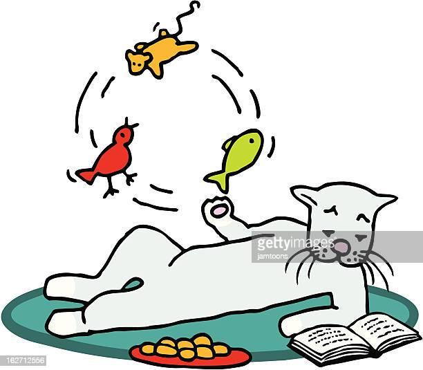 multitasking cat - cat food stock illustrations