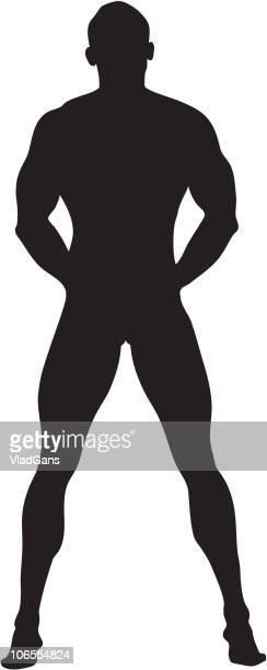 bildbanksillustrationer, clip art samt tecknat material och ikoner med muscular nude male torso - naken