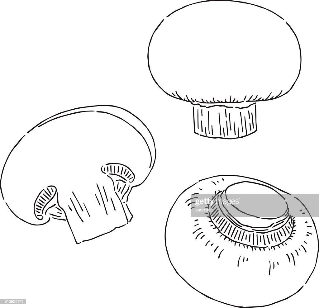 Uncategorized Mushroom Drawing mushroom drawing vector art getty images art