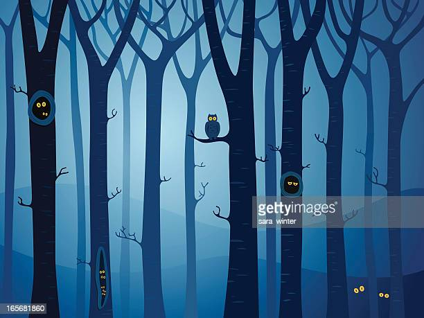 mysterious forest with animals hiding between the trees at night - mystery stock illustrations