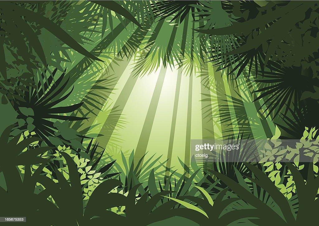 mystic jungle : stock illustration