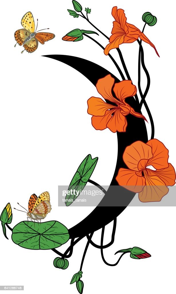 nasturtium, butterflies and moon