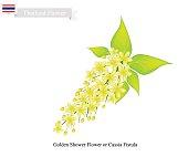 National Flower of Thailand, Golden Shower Flower