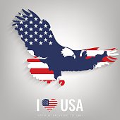 National USA symbol eagle with an official flag and map