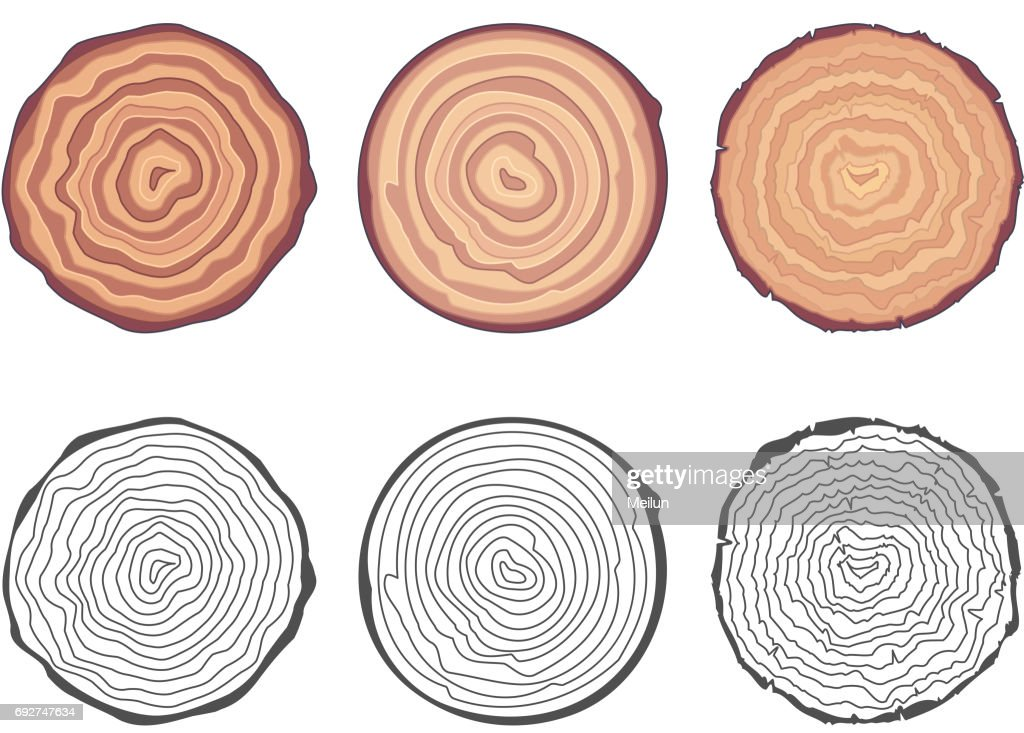 Natural tree rings background saw cut tree trunk decorative design elements set vector illustration