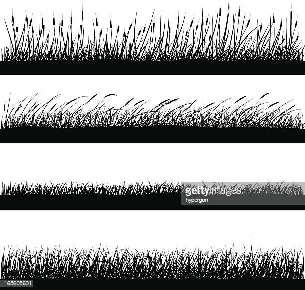 Nature Elements - Grass