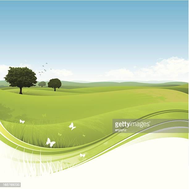 Nature paysage en arrière-plan