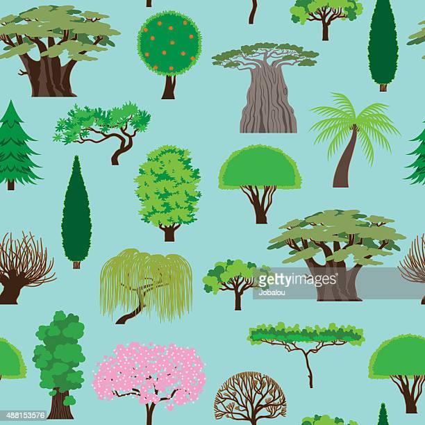 ilustrações de stock, clip art, desenhos animados e ícones de árvores de natureza fundo sem costura - laranjeira