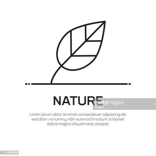 illustrazioni stock, clip art, cartoni animati e icone di tendenza di nature vector line icon - simple thin line icon, premium quality design element - foglia