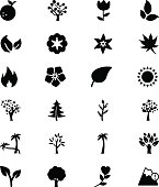 Nature Vector Solid Icons 3