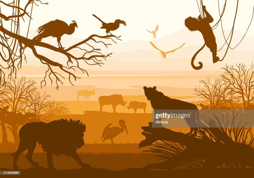 nature with wild animals (lion, boar, goat, cormorant, monkey, peacock,)