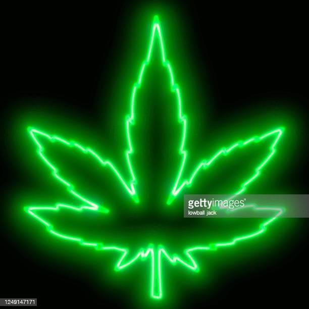 neon retro marijuana leaf sign. vector stock illustration. - marijuana leaf stock illustrations