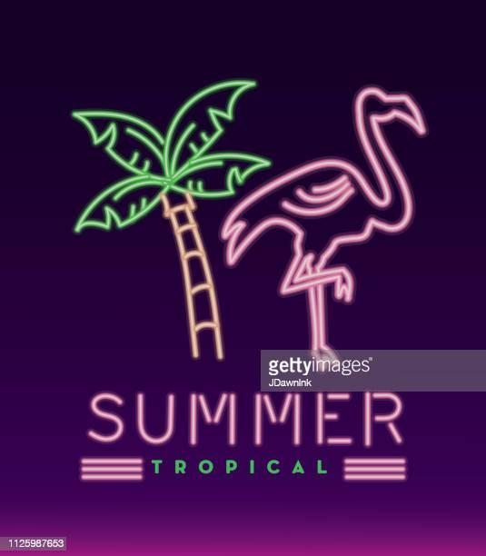 ilustrações de stock, clip art, desenhos animados e ícones de neon sign tropical summer fun design - flamingo