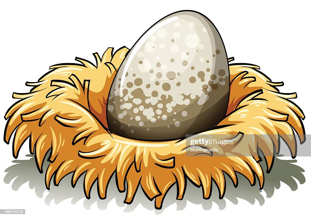 Nest with an egg