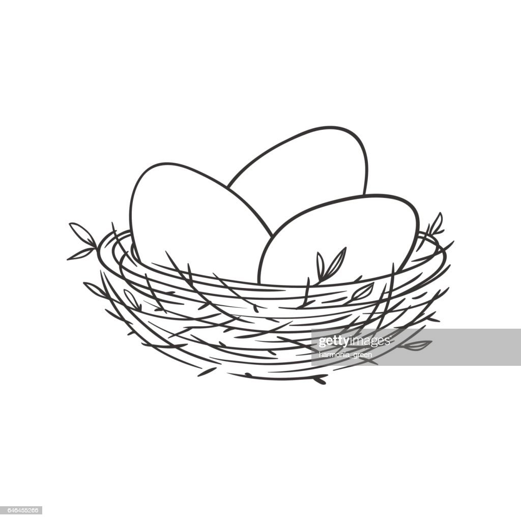 nest with eggs isolated on white