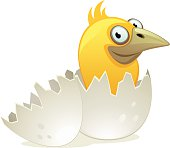 Nestling in egg