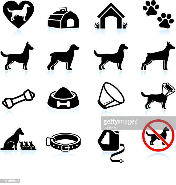 new dog owner black and white vector icon set - pet equipment stock illustrations, clip art, cartoons, & icons