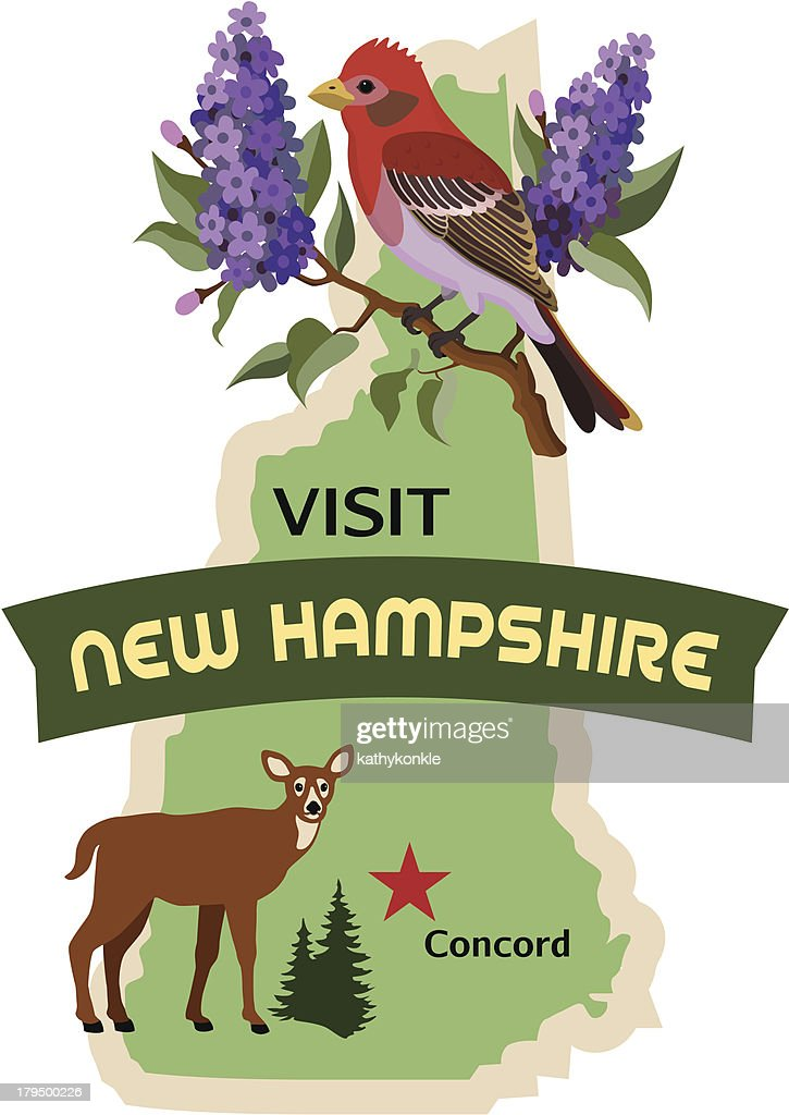 New Hampshire luggage label or travel sticker : stock illustration