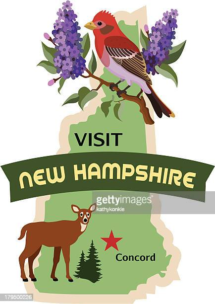 New Hampshire luggage label or travel sticker