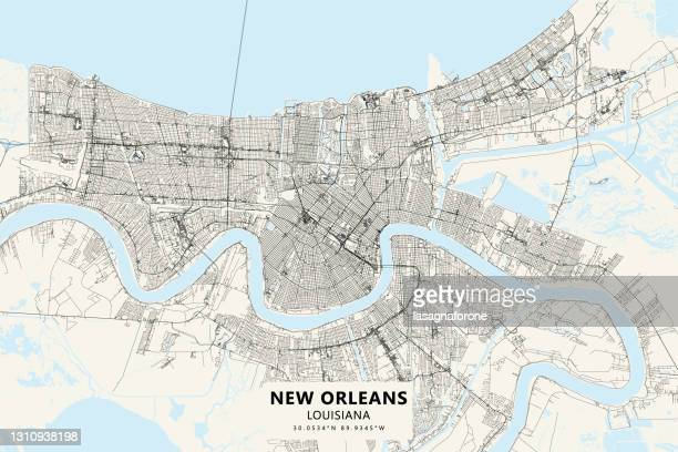 new orleans, louisiana usa vector map - new orleans city park stock illustrations
