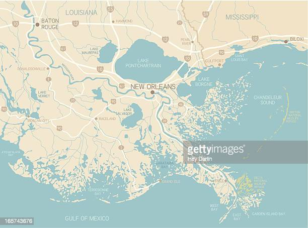 new orleans region - new orleans stock illustrations, clip art, cartoons, & icons