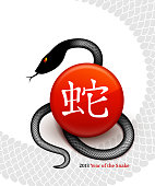 New Year of the Snake 2013 with 3D Chinese Lettering