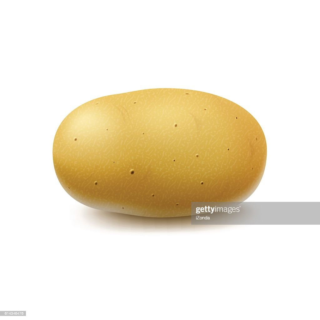 New Yellow Raw Whole Unpeeled Potato Isolated