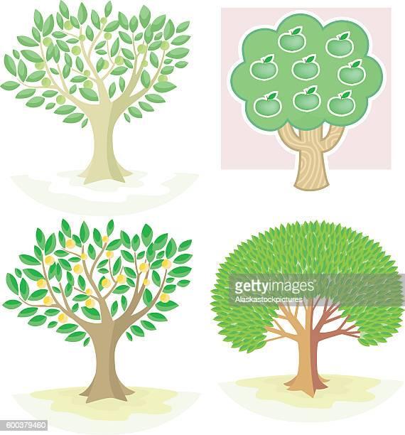 nice Trees (4 Various)