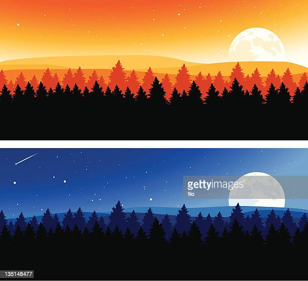 night and day background - treelined stock illustrations, clip art, cartoons, & icons
