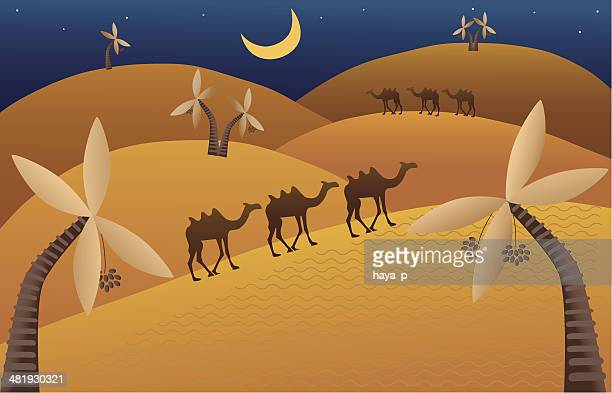 Night Desert With Walking Camels