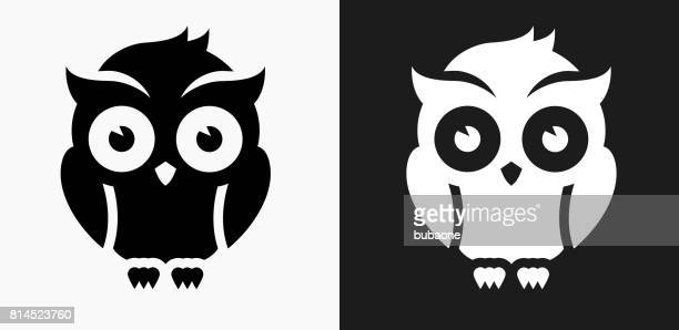 night owl icon on black and white vector backgrounds - owl stock illustrations