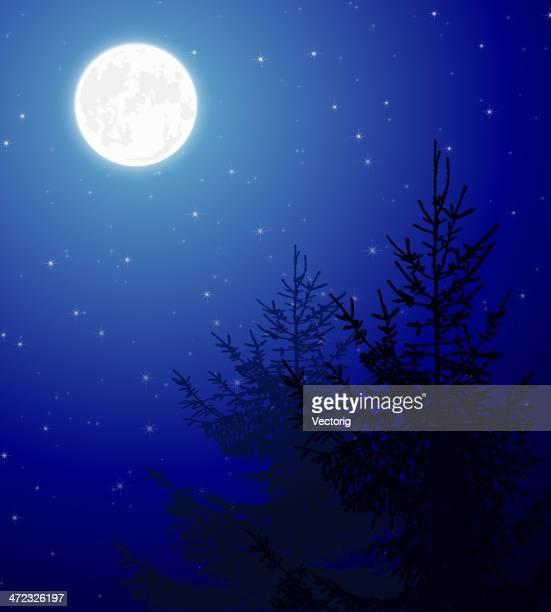 60 Top Night Sky Stock Vector Art & Graphics - Getty Images
