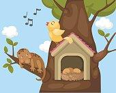 nightingale bird on bird house