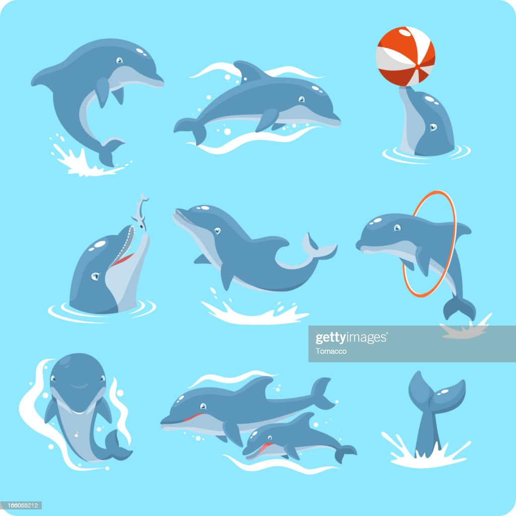 Nine Dolphin set collection playing with ball and ring